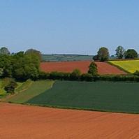 Биоорганическое удобрение Терра Органик и проблемы восстановления плодородия почвы